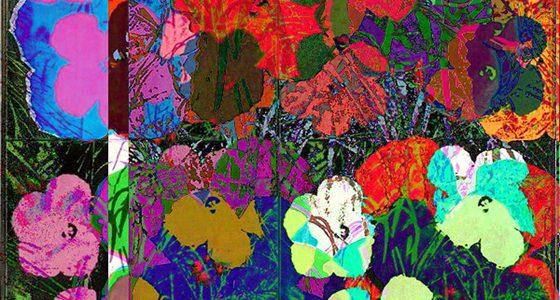 Art & Algorithms #2: Cornelia Sollfrank