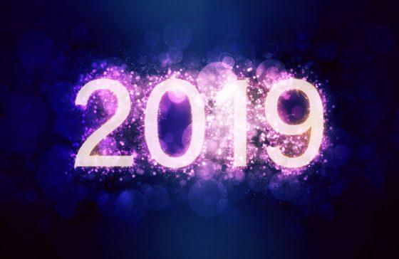 Sieben neue Projekte in 2019