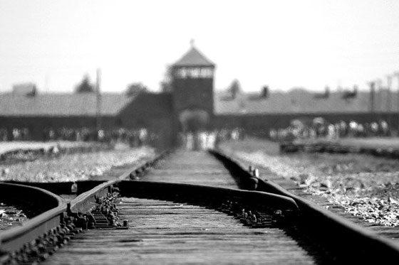 Witness Auschwitz? (2020)