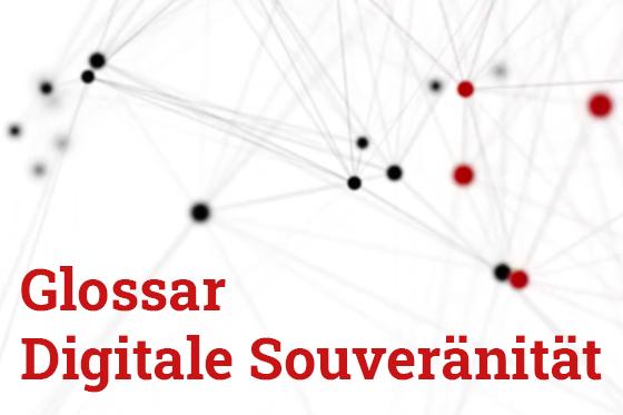 Bildung für eine digitale Souveränität (2020)